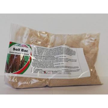 Soil Bac concia cereali in...